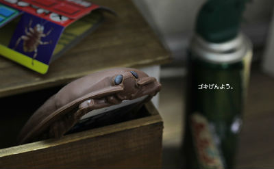 haru_go03.jpg