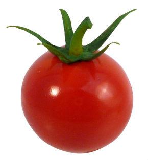 ah_tomato3.jpg