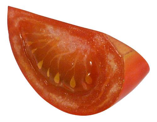 ah_tomato6.jpg