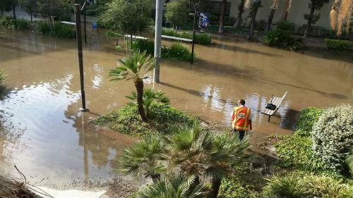 ah_flood2.jpg