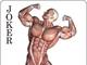 トランプは遊びじゃねえ……筋肉のお勉強だ! 54枚すべてが筋肉の「筋肉トランプ」発売