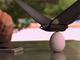 鳥のように羽ばたく飛行ドローンがスマホで操作できるだと……まるで生き物だ!