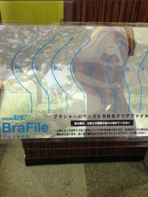 SODブラジャーのサイズが測れるクリアファイル