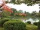桜の季節に風情を感じる 4月4日からの9日間、金沢市・兼六園が無料開園