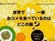 日本人はお米をたくさん食べていると思ったら大間違い 世界で比較したらまさかの順位に