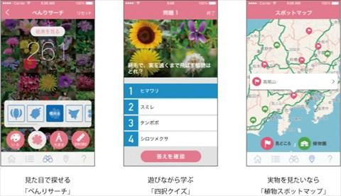 haru_zukan03.jpg