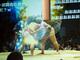 ニコニコ超会議2015:地球割れた! 相撲界最大のタブー「リアルSUMOU」フォトリポート