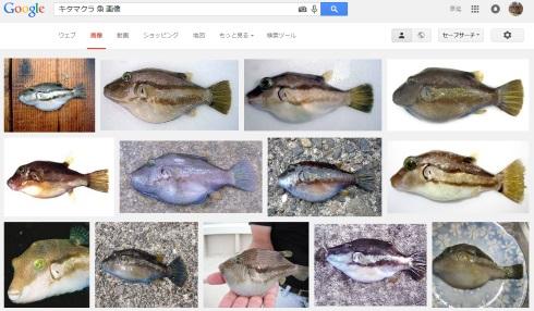 150706_kitamakura_04.jpg