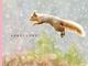 ほっこりかわいい 動物たちがピョンピョン跳んでる写真集「とびます!とびます!」刊行