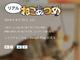 """リアルねこあつめキター! 「ねこあつめ」の実写イベント、Google Play GAME WEEK """"2015 秋""""で開催"""