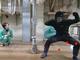 類人猿、ヒト特有の能力と考えられた「1日以上」の記憶を持つことが明らかに 京都大学が米国科学誌で発表