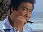1982年日本の松を守ろう