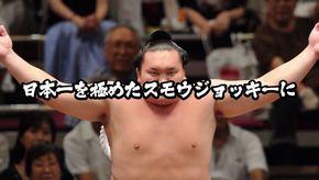 相撲ダービー