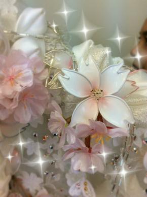 小林幸子さん、紅白の「千本桜」衣装