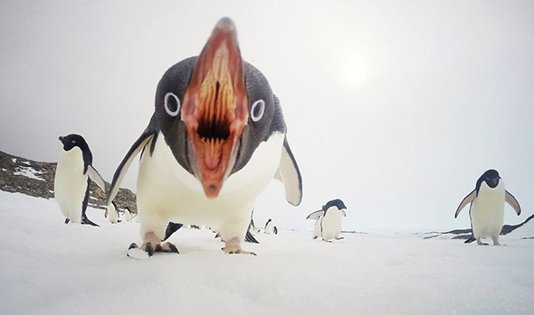 Photo and caption by Clinton Berry / National Geographic Your Shot