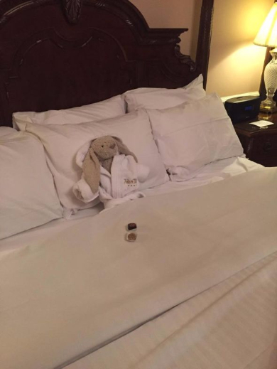 ぬいぐるみホテル
