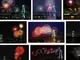 毎年恒例の「東京湾大華火祭」、2016年夏から休止