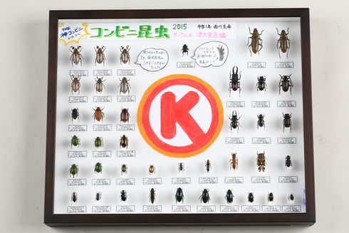 コンビニ昆虫