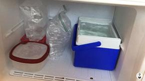 冷凍庫にドン