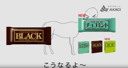 BLACK - 赤城乳業