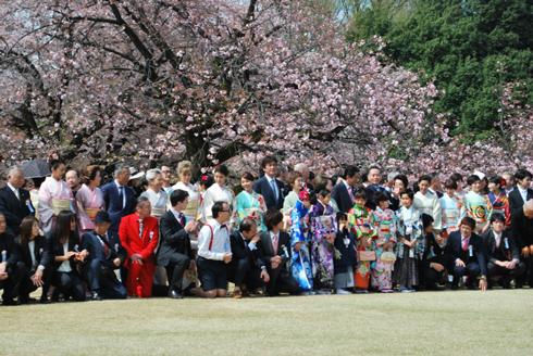 桜を見る会遠景。記念撮影
