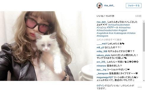 中村理沙と猫さん