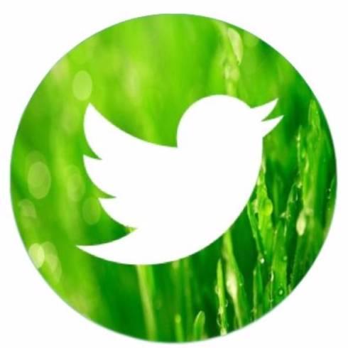 Twitter有料化