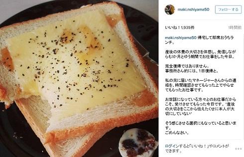 西山茉希Instagram真意を告白