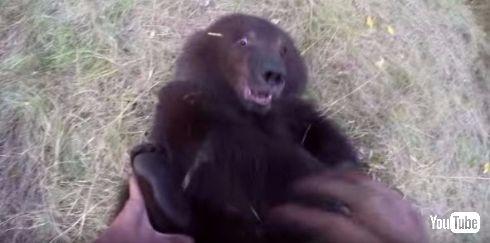 アメリカの自然活動家が子熊と仲良く
