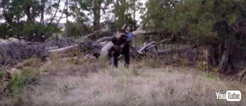 子熊とキャッキャウフフする動画