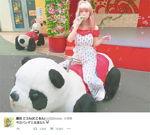 パンダと戯れる藤田ニコルさん