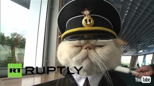 ロシア豪華客船の船長猫