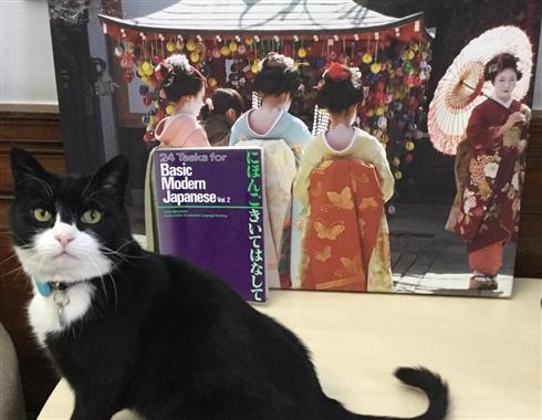 ネズミ捕獲長としてイギリス外務省に務める猫が日本語学習を開始