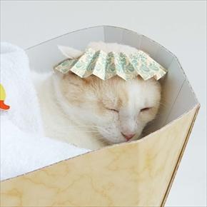 フェリシモ バスタブ型猫の爪とぎ