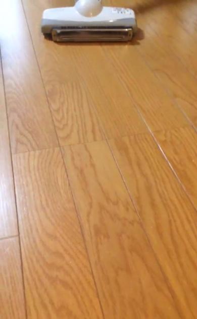 ハーモニカ 掃除機