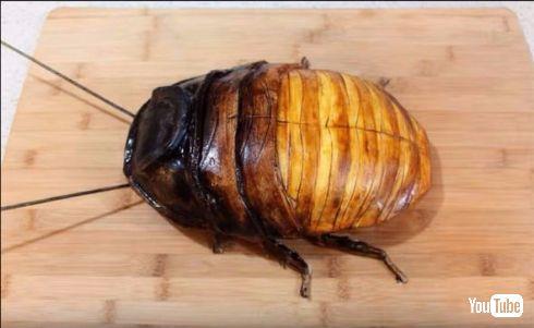 マダガスカルゴキブリ