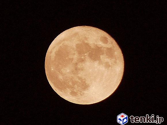 月に関する話題