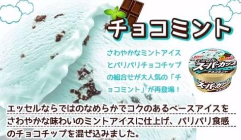 スーパーカップチョコミント