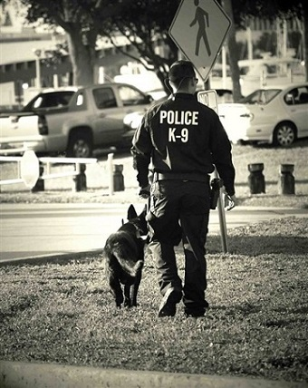 警察犬の元同僚に最後のお別れ