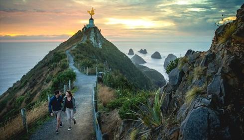 ニュージーランドにポケモンいそう
