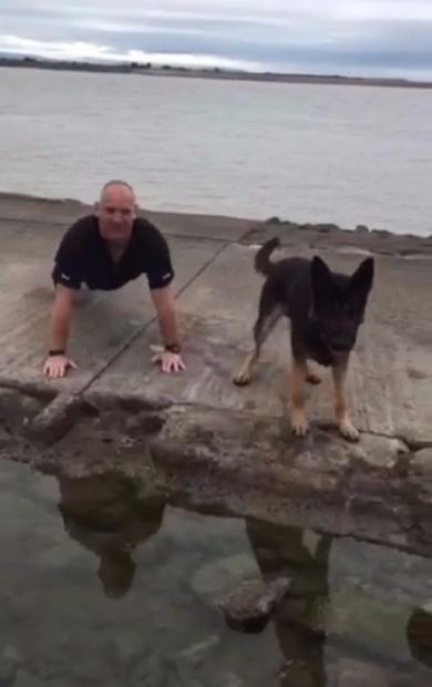 警察犬 腕立て 一緒