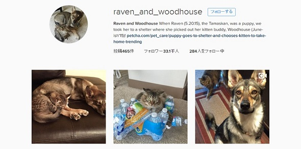 raven_and_woodhouseのInstagram