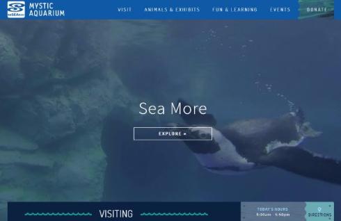 ペンギン 3Dプリンタ ブーツ 水族館