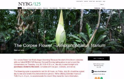 ショクダイオオコンニャク 開花 中継 ニューヨーク植物園