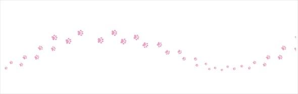 猫のトイレットペーパー