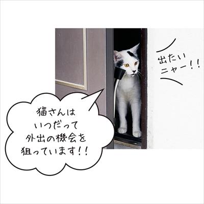 猫が飛び出します マグネットステッカー