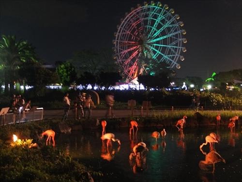 東武動物公園 オータムナイトZOO