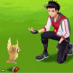 ポケモンGO VSポッポ モンスターボール あるある GIF