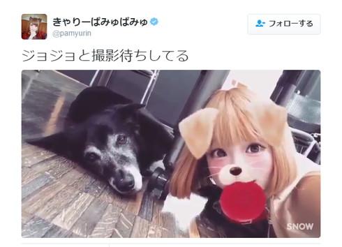 きゃりーさんと犬のジョジョ