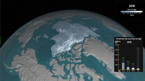 北極 海氷